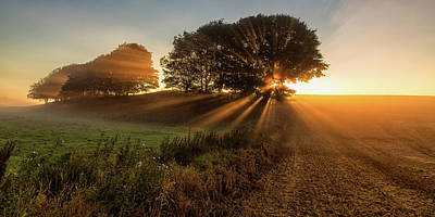Sunbeams Photograph - Sunbeams by Leif L?ndal