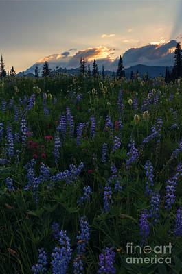 Sunbeams Over Rainier Original