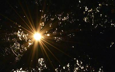 Photograph - Sunburst by AJ  Schibig