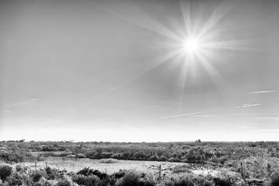 Photograph - Sunburst by Howard Salmon