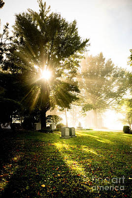Sunburst Over Cemetery Art Print by Amy Cicconi