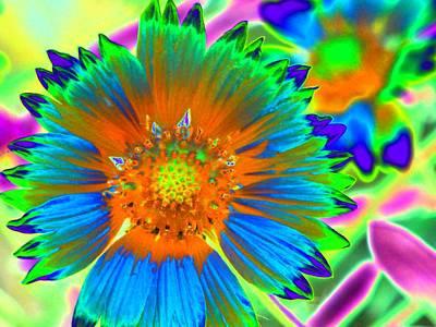 Photograph - Sunburst - Photopower 2241 by Pamela Critchlow
