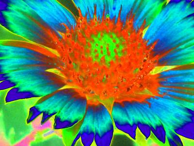 Photograph - Sunburst - Photopower 2244 by Pamela Critchlow