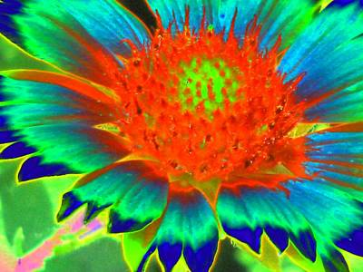 Photograph - Sunburst - Photopower 2245 by Pamela Critchlow