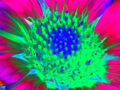 Photograph - Sunburst - Photopower 2247 by Pamela Critchlow