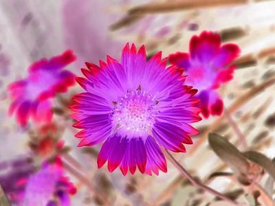Photograph - Sunburst - Photopower 2248 by Pamela Critchlow