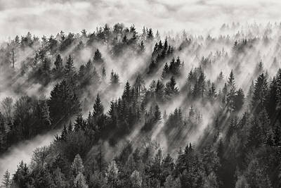 Aerial View Photograph - Sundance No.1 by Davorin Baloh