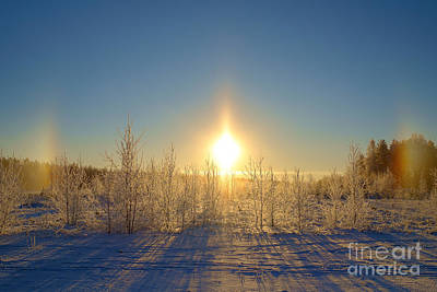 Sundogs In Winter Wonderland Art Print