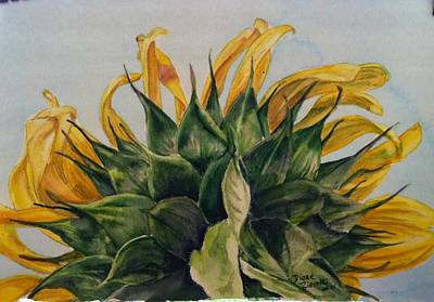 Painting - Sunflower 3 by Diane Ziemski