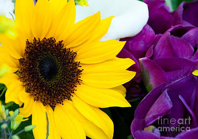 Macro Flower Photograph - Sunflower And Company by Dana Kern