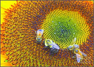 Sunflower And Honey Bees Original by Dora Sofia Caputo Photographic Art and Design
