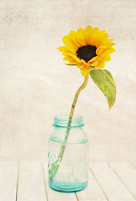 Sunflower Ball Mason Art Print by Terry DeLuco