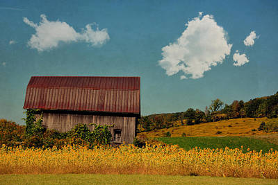 Photograph - Sunflower Barn by Emily Stauring