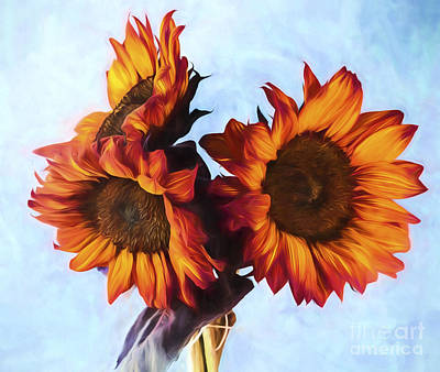 Photograph - Sunflower Bouquet by Shirley Mangini