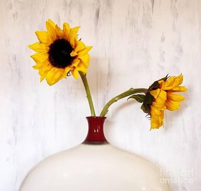 Wrap Digital Art - Sunflower Decor by Marsha Heiken