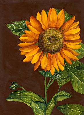 Painting - Sunflower by Diane Ferron