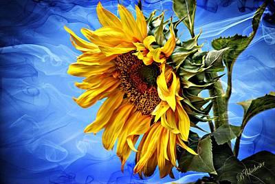 Sunflower Fantasy Art Print by Barbara Chichester