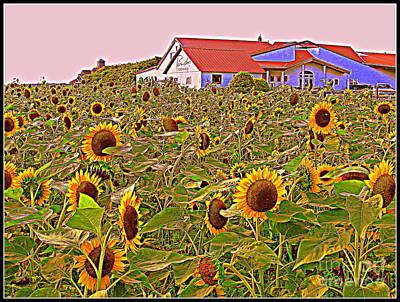 Sunflower Field Original by Dora Sofia Caputo Photographic Art and Design