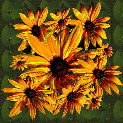 Sunflower Flower Orange Flower Bunch Bouquet Spiritual Elegant Artistic Graphic Digital Stock Images Original