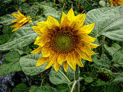 Photograph - Sunflower Garden by Roxy Hurtubise