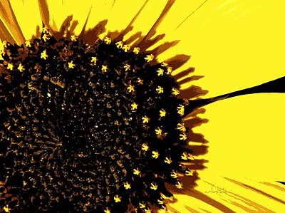 Photograph - Sunflower Graphic by Chris Berry