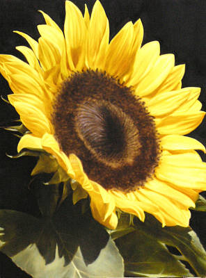 Painting - Sunflower I by Thomas Darnell