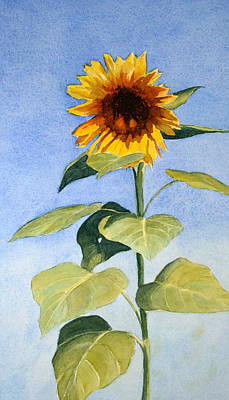 Painting - Sunflower II by Vikki Bouffard