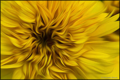 Photograph - Sunflower In Oil by Erika Fawcett