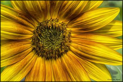 Sunflower In Oil Paint Art Print