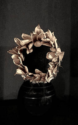 Photograph - Sunflower In Taupe by Patricia Januszkiewicz