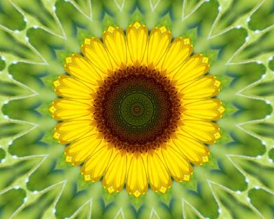 Photograph - Sunflower Kaleidoscope 1 by Sheri McLeroy