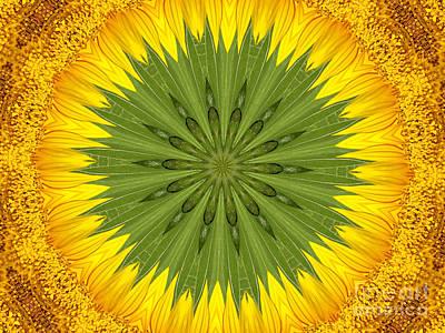 Photograph - Sunflower Kaleidoscope 3 by Rose Santuci-Sofranko