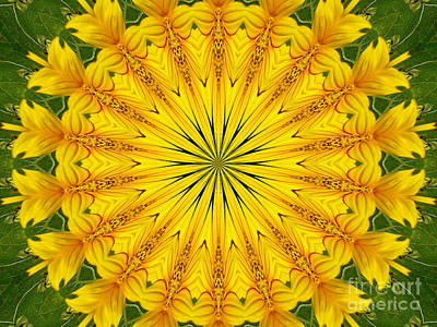 Photograph - Sunflower Kaleidoscope 6 by Rose Santuci-Sofranko