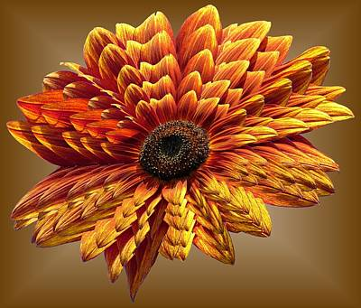Photograph - Sunflower Layers On Brown by MTBobbins Photography