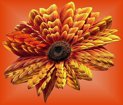 Photograph - Sunflower Layers On Orange by MTBobbins Photography