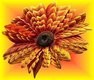 Photograph - Sunflower Layers On Warm Colors by MTBobbins Photography
