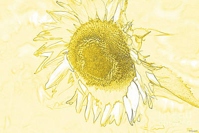 Monotone Drawing - Sunflower Make Me Smile by Diana  Tyson
