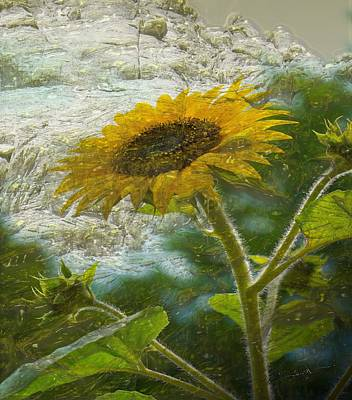 Sunflower Mountain Art Print