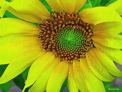 Sunflower On Strong Canvas Art Print by Buzz  Coe