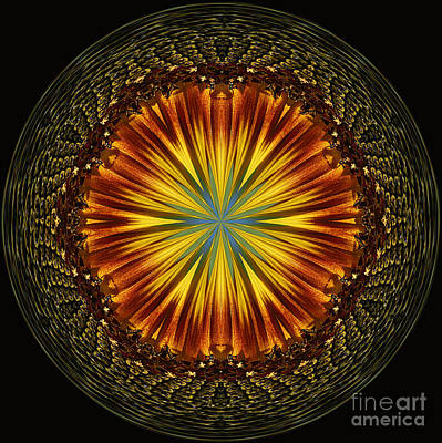 Photograph - Sunflower Orb by Cindi Ressler