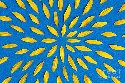Yellow Sunflowers Photograph - Sunflower Petals Pattern by Tim Gainey