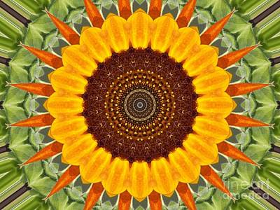 Photograph - Sunflower Power by Annette Allman