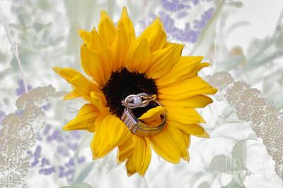Photograph - Sunflower Rings by Mark McReynolds