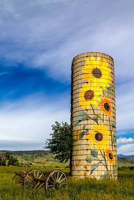 Sunflower Silo Original by Teri Virbickis