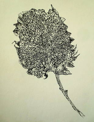 Interior Still Life Drawing - Sunflower Still Life by Mark Van Ert