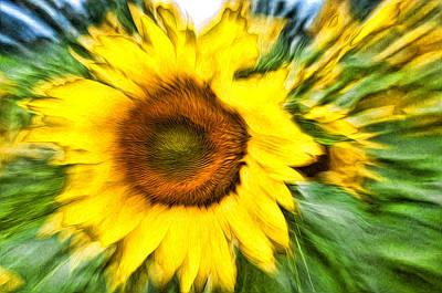 Sunflower Study 4 Art Print by Mitchell Brown