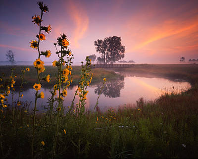 Photograph - Sunflower Sunrise by Ray Mathis