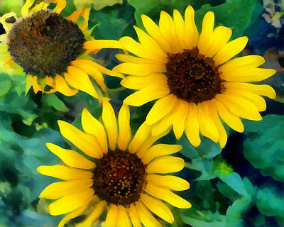 Photograph - Sunflower Trio  by Ann Powell
