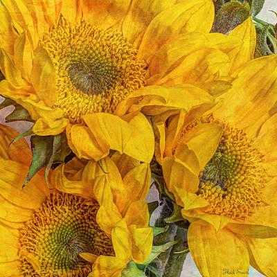 Photograph - Sunflower Trio by Heidi Smith