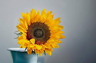 Photograph - Sunflower by Veli Bariskan